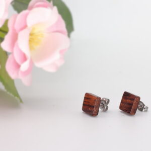 10mm cocobolo ear studs